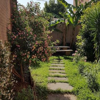 Un Giardino Segreto A Roma