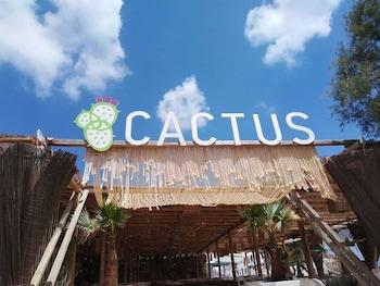 Cactus Beach Paros