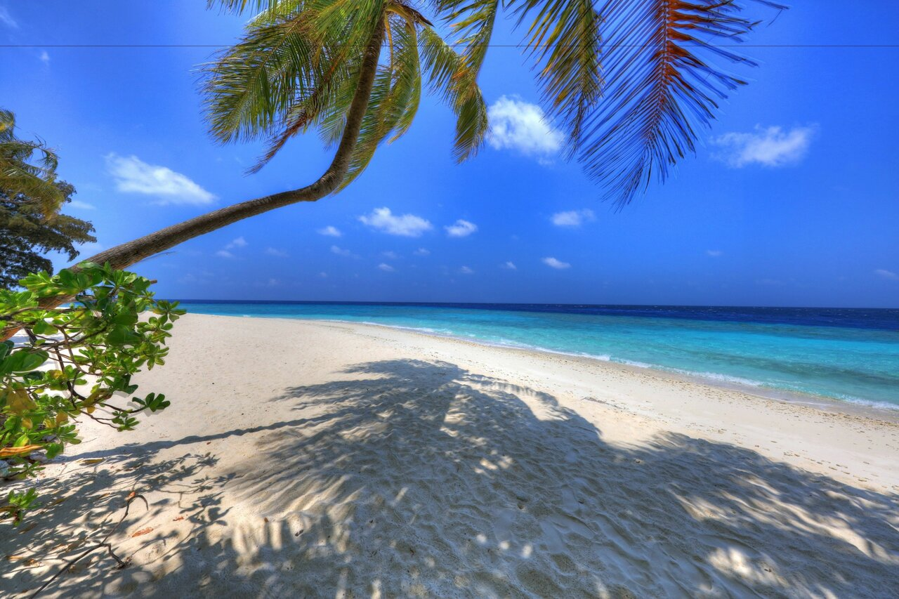 Koimala Maldives