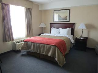 Comfort Inn Mississauga